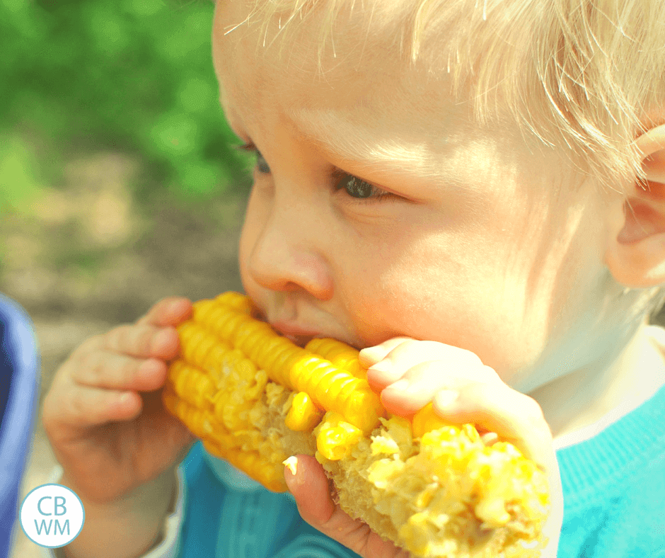 pretoddler eating corn