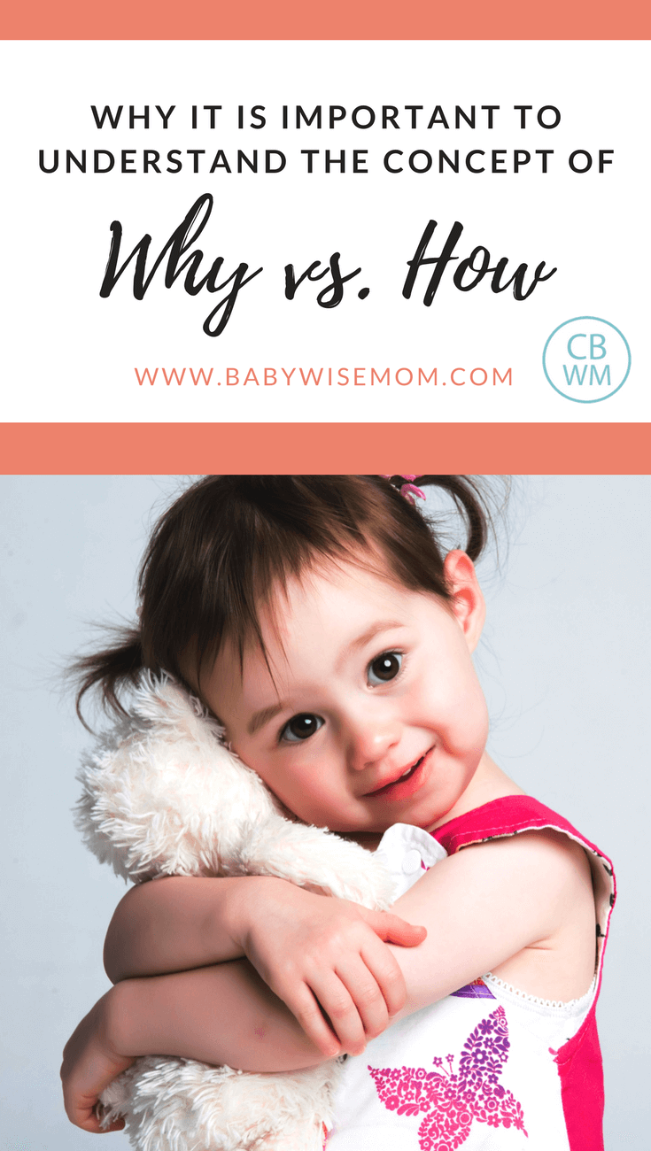 Understanding Why vs. How When Disciplining | Babywise | On Becoming Babywise | #babywise
