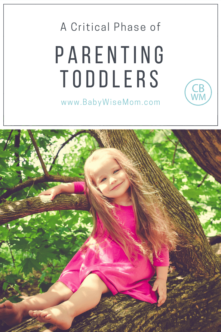 Parenting Toddlers: a Critical Phase of Learning. Reasons why you should direct toddler curiosity rather than let the toddler have free reign.