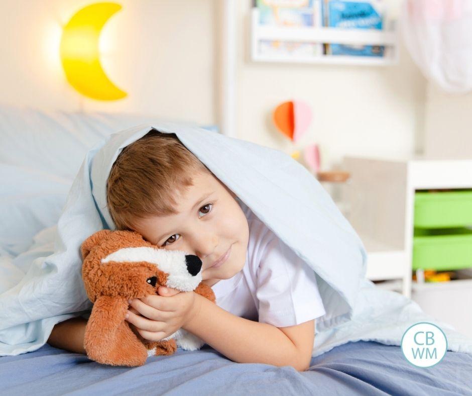 Toddler in bed awake with stuffed animal