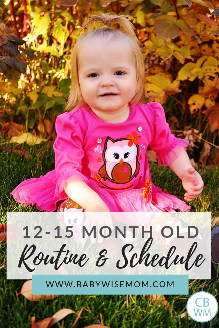 12-15 months old routine and schedule