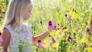 Girl looking at wildflowers