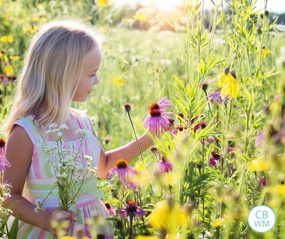 Girl looking at wildflowers