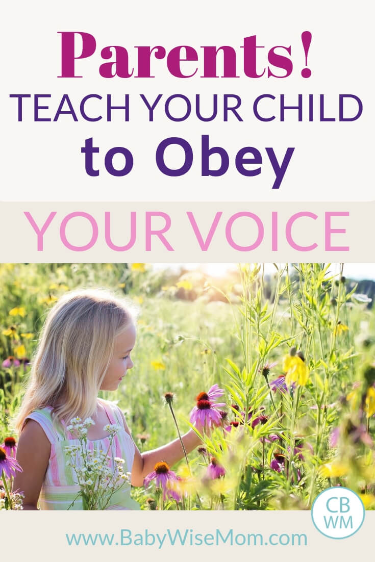 Why you want to train your child to obey you rather than just memorize rules of what is okay to do and what is not okay to do.