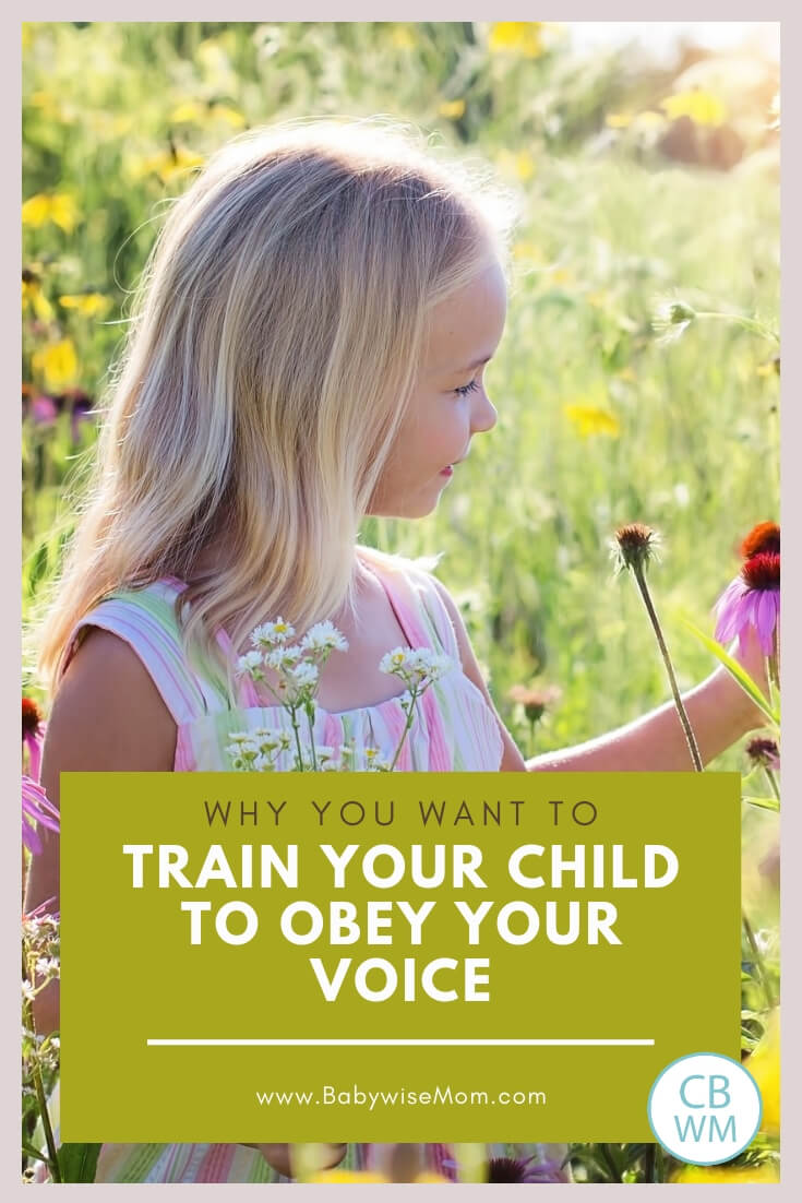 Girl looking at wild flowers with text that reads Why you want your child to obey your voice