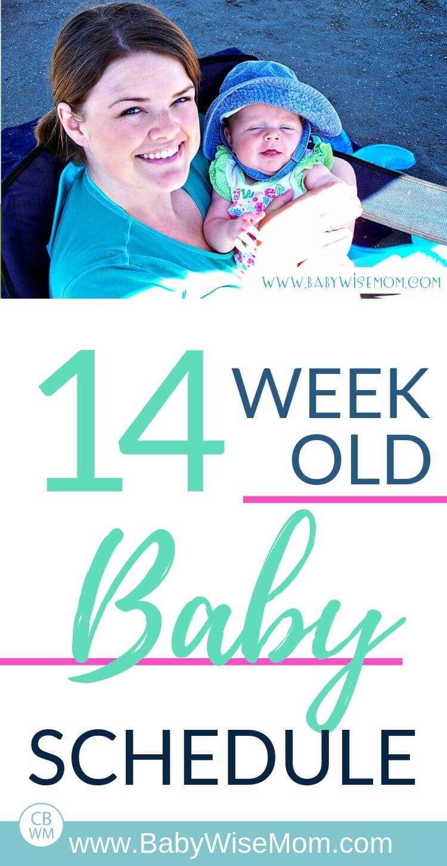 14 week old baby schedule pinnable image