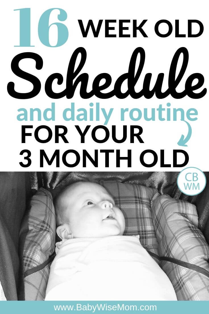 16 week old schedule and daily routine for your 3 month old schedule