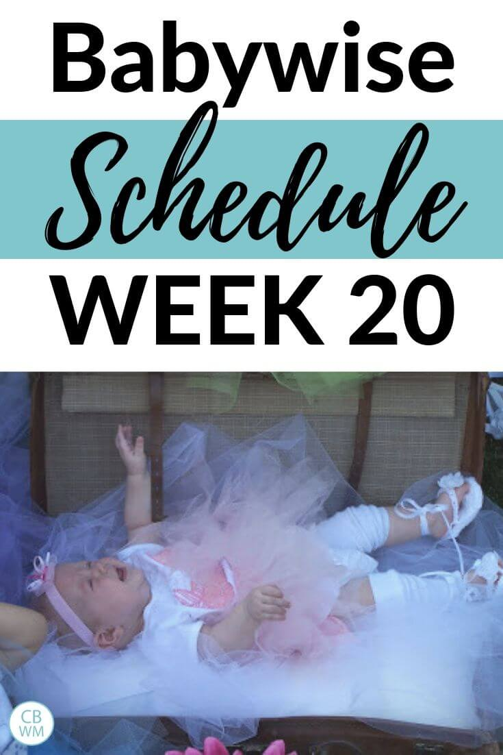 Babywise Schedule Week 20
