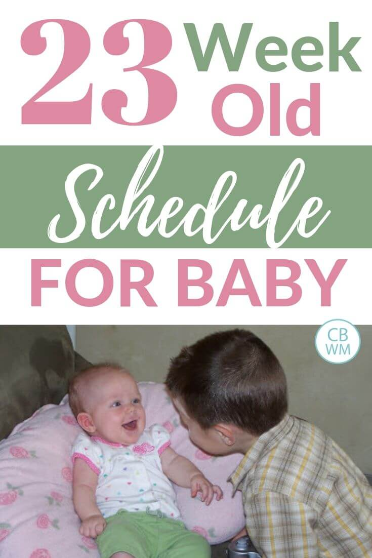 Baby schedule pinnable image