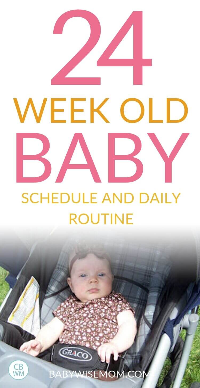 24 week old baby schedule pinnable image