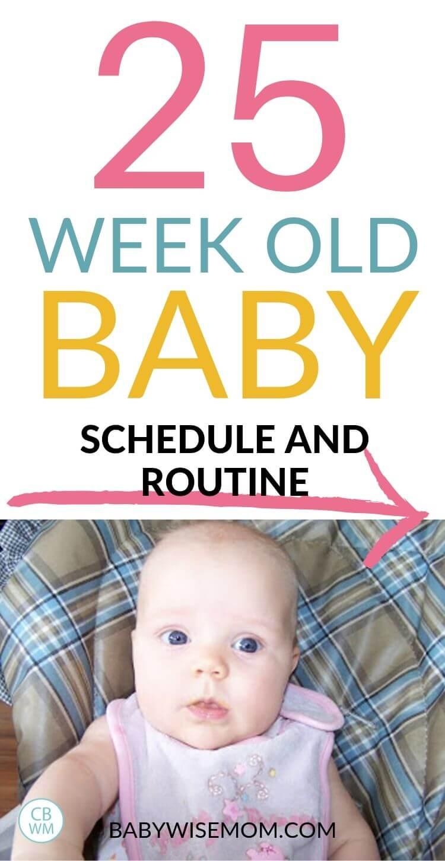 25 week old baby schedule pinnable image