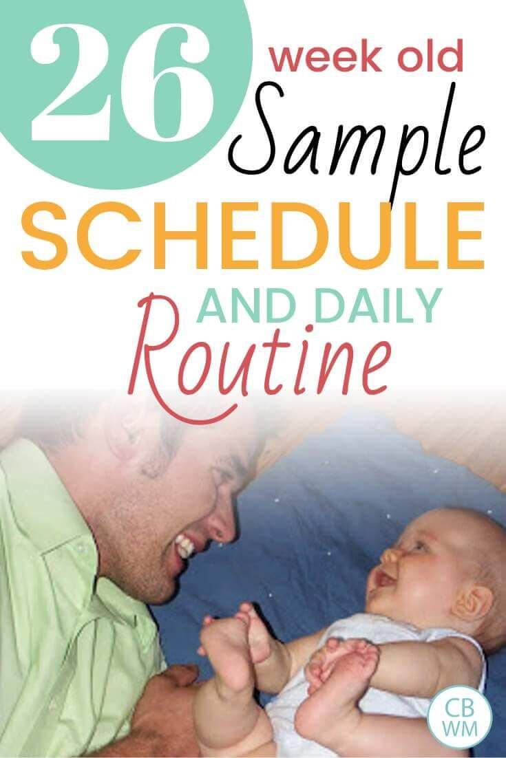 26 week old sample schedule Pinnable image