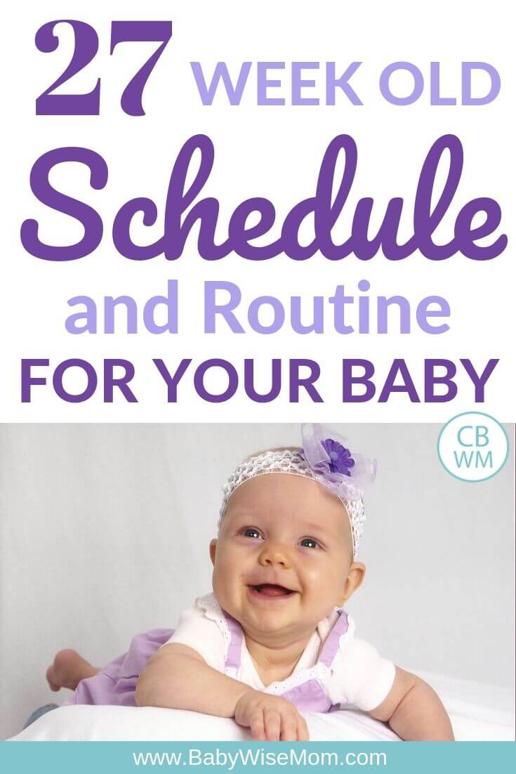 27 week old schedule pinnable image