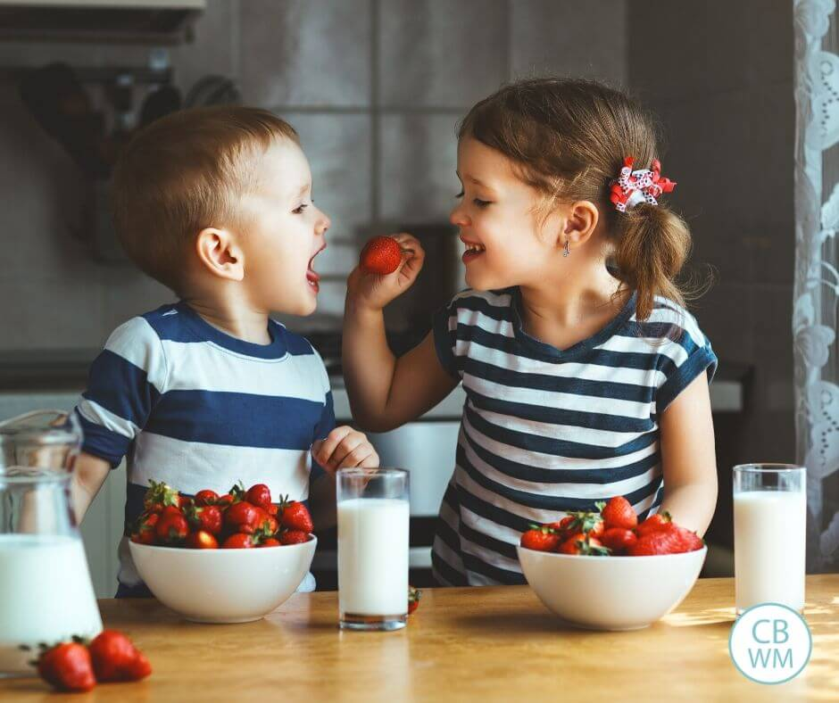 Sister feeding strawberries to brother