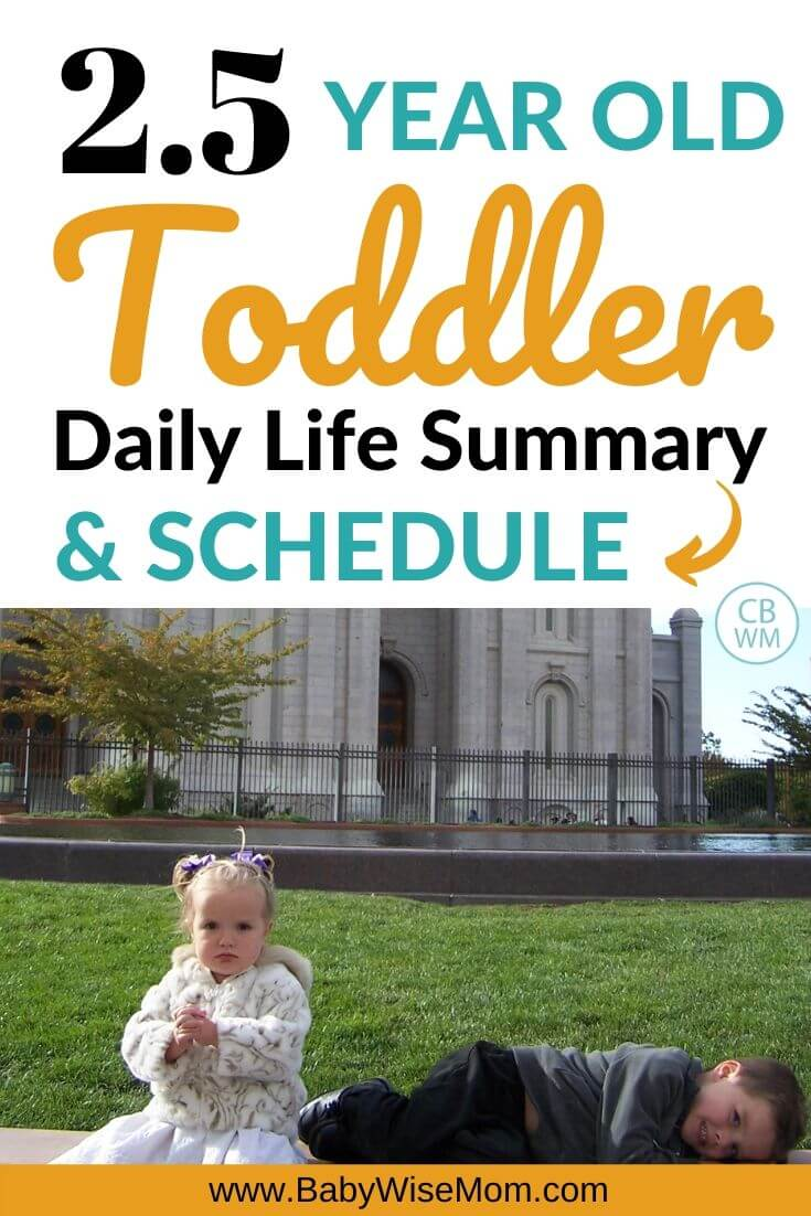 2.5 year old toddler schedule Pinnable Image