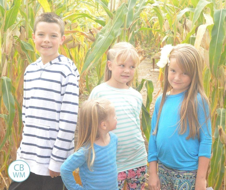 Four kids in a corn field