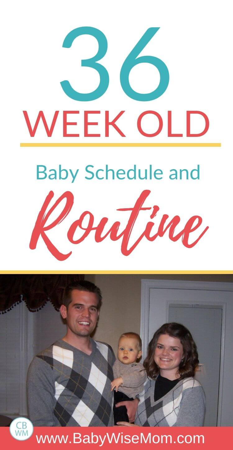 36 week old baby schedule and routine pinnable image