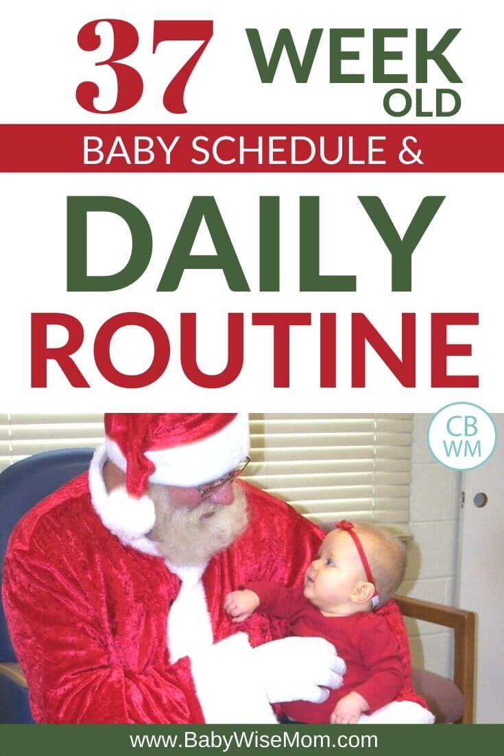 37 week old schedule and routine pinnable image