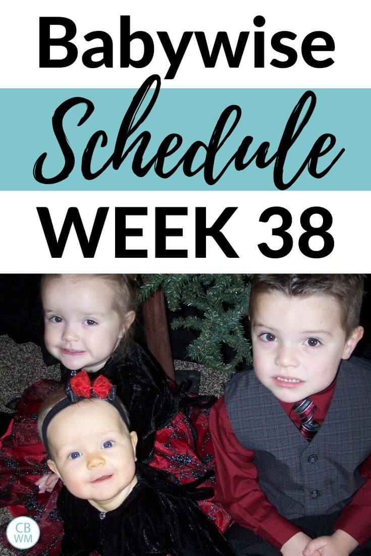 Babywise Schedule 38 Weeks Old pinnable image