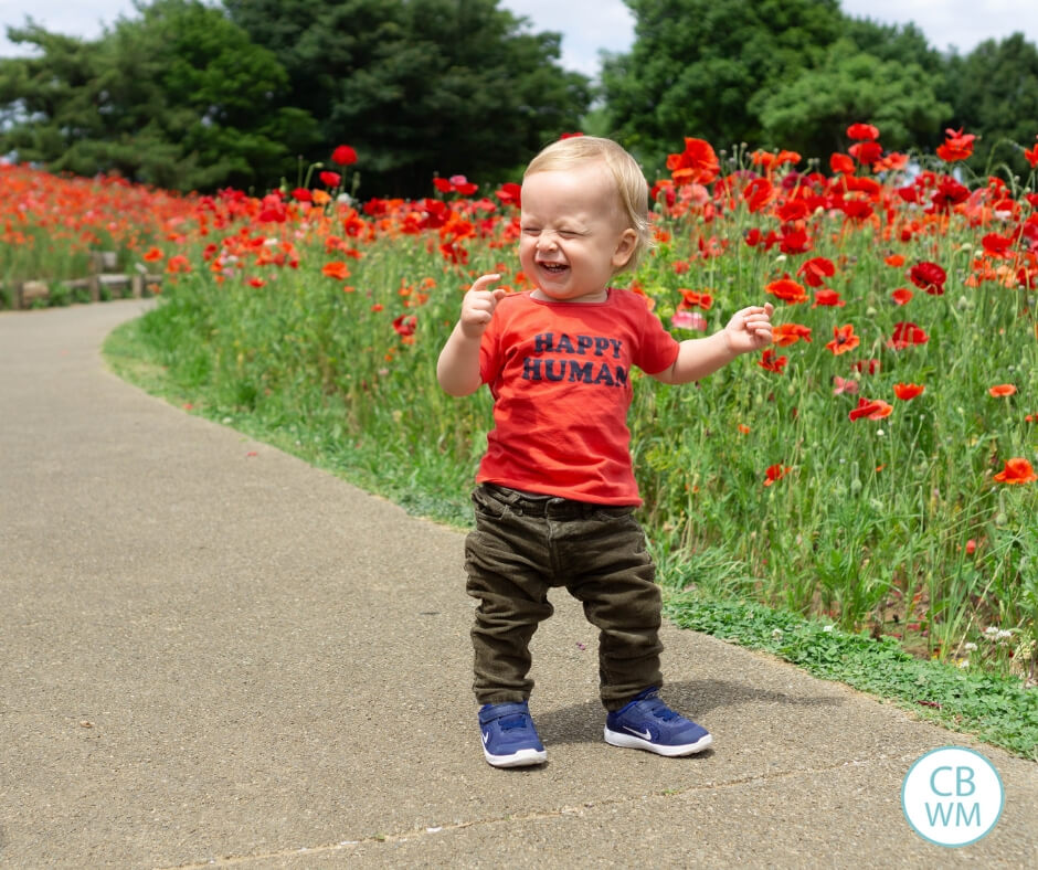 Happy toddler walking among red flowers