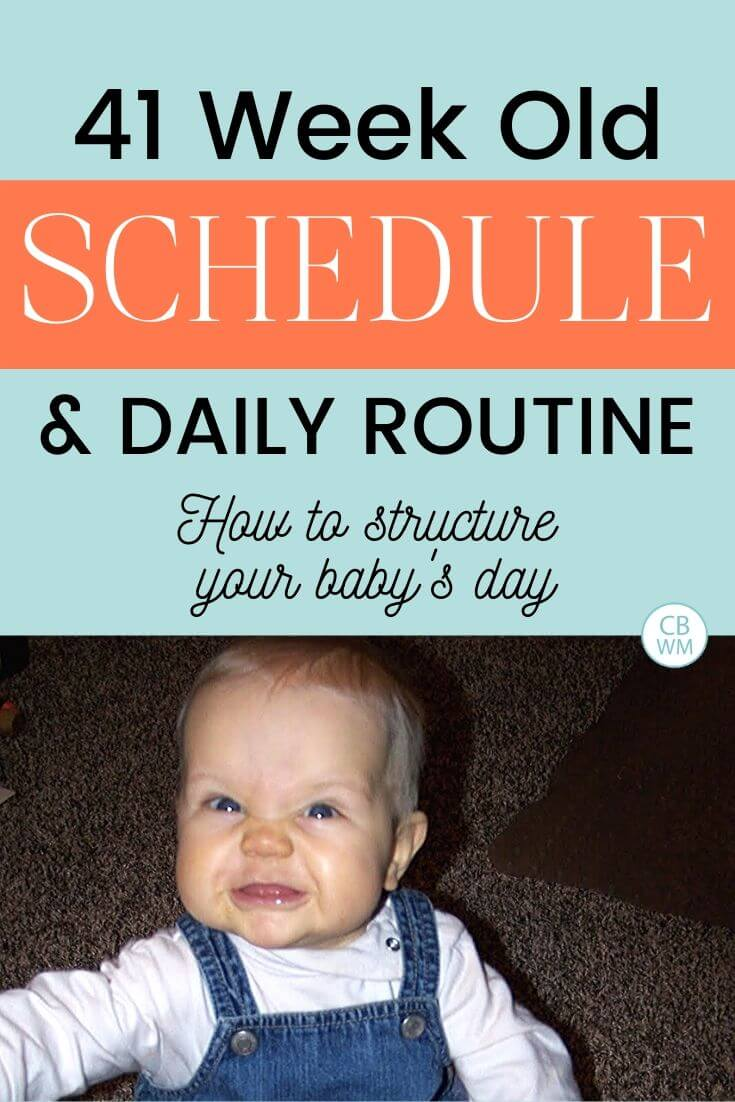 41 week old schedule and daily routine pinnable image