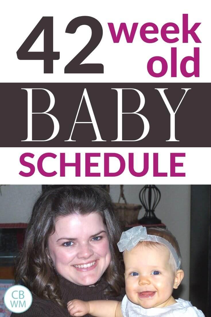 42 week old baby schedule pinnable image