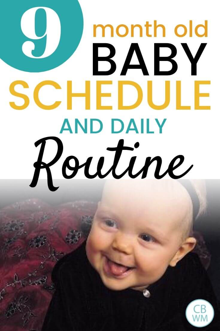 9 month old baby schedule and daily routine pinnable image