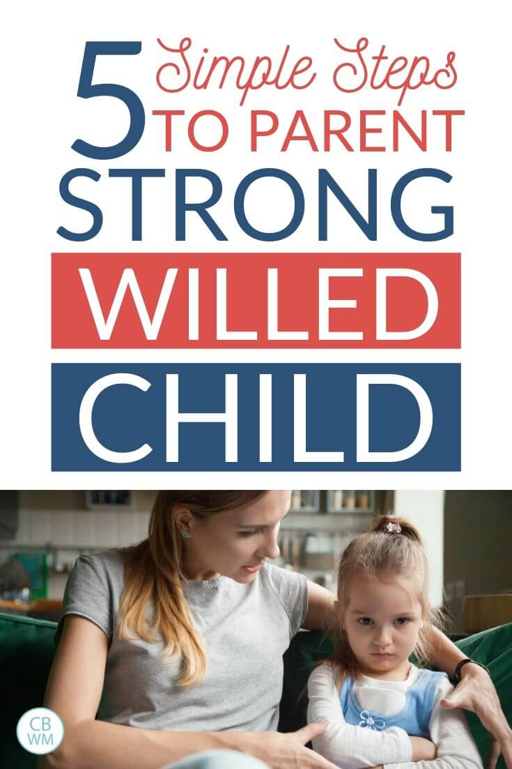 Parent a strong willed child pinnable image