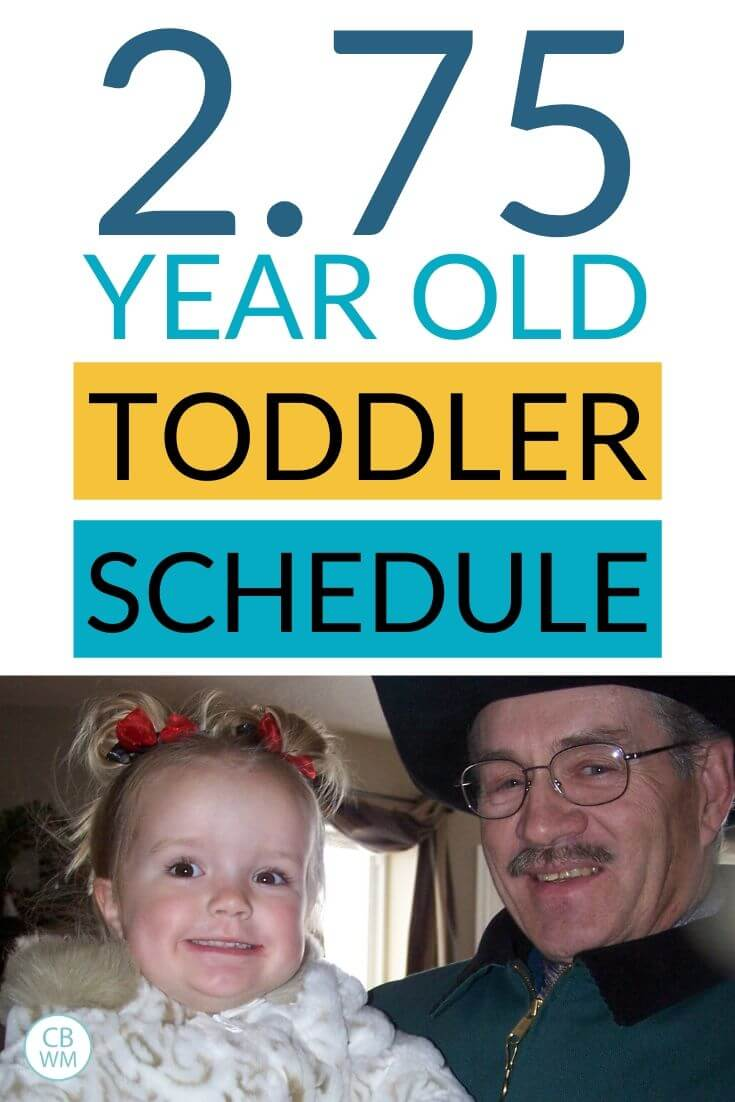 2 year old toddler schedule pinnable image
