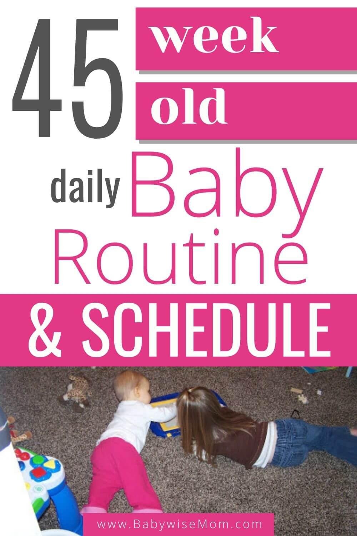 45 week old baby schedule pinnable image