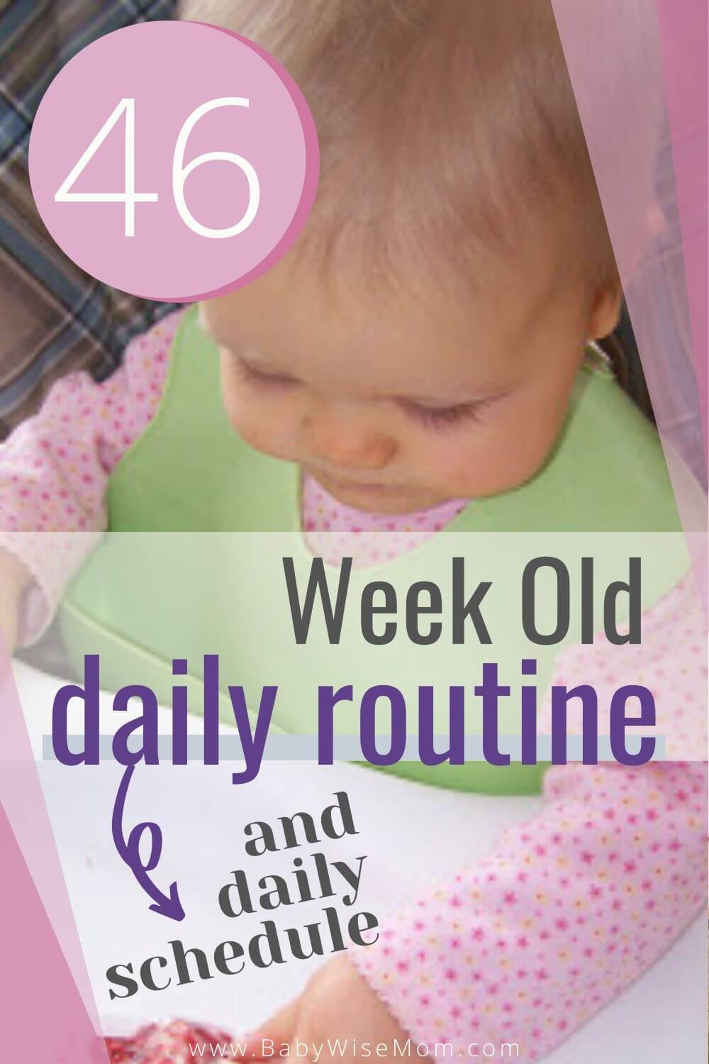 46 week old baby schedule pinnable image