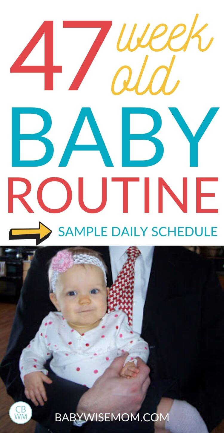 47 week old baby routine and daily schedule pinnable image