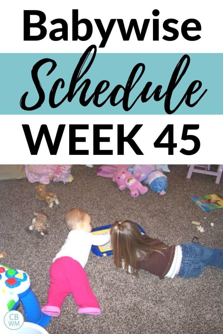Babywise Schedule Week 45 Pinnable Image