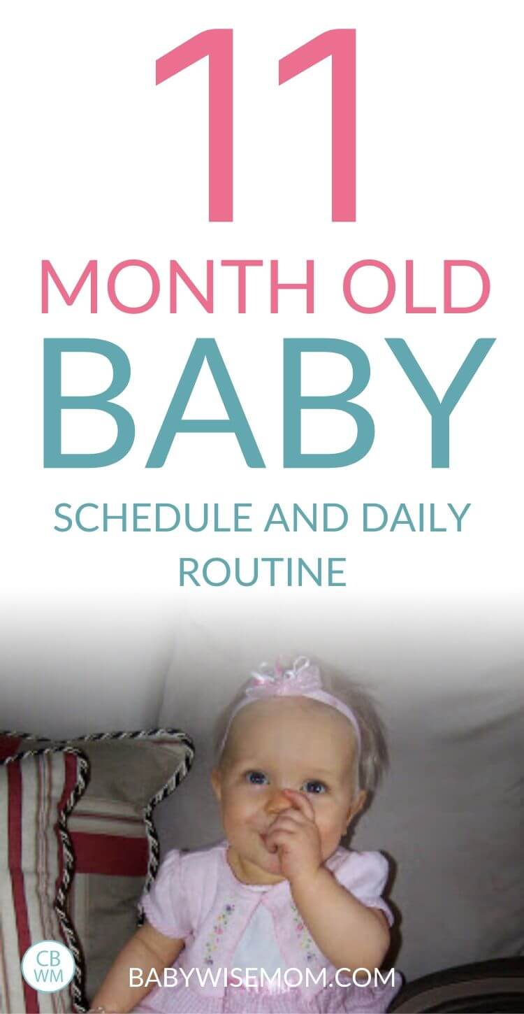 11 month old schedule pinnable image