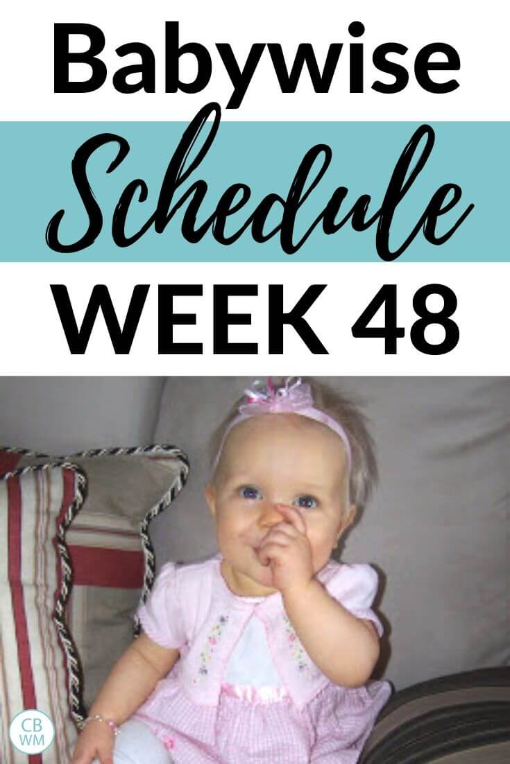 48 week old Baywise Schedule pinnable image