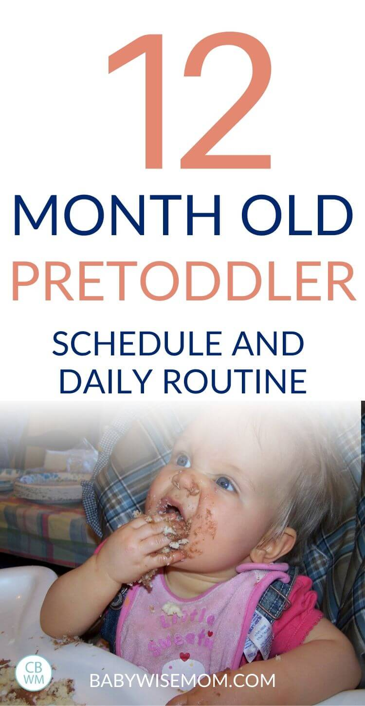 12 month old pretoddler schedule pinnable image