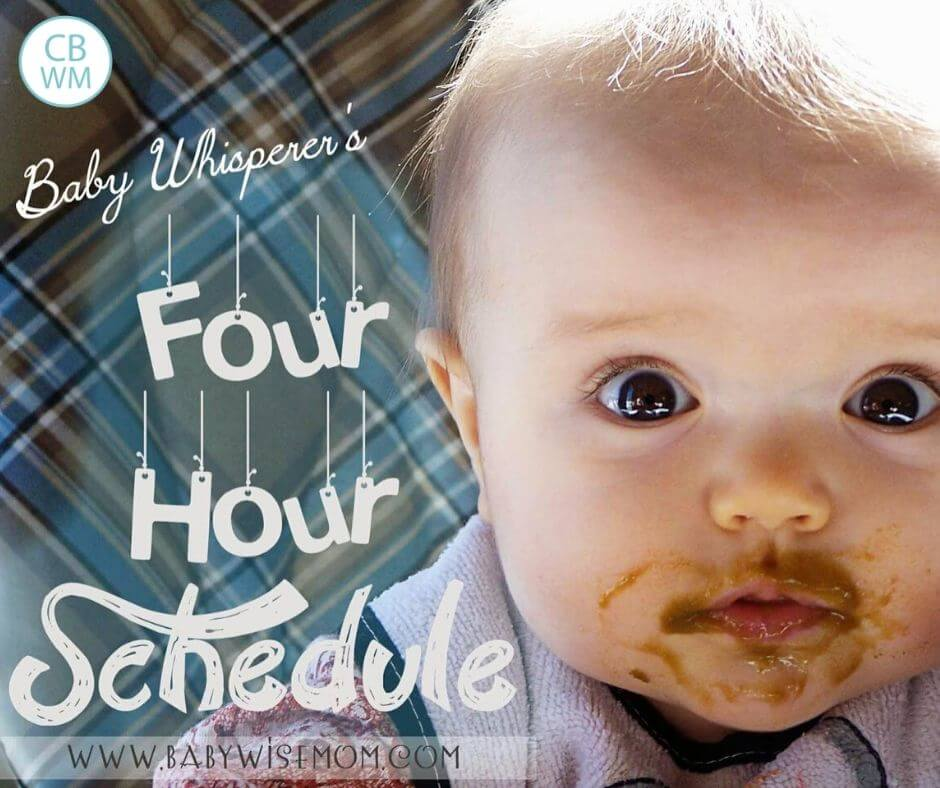 Baby Whisperer's four hour schedule hero image