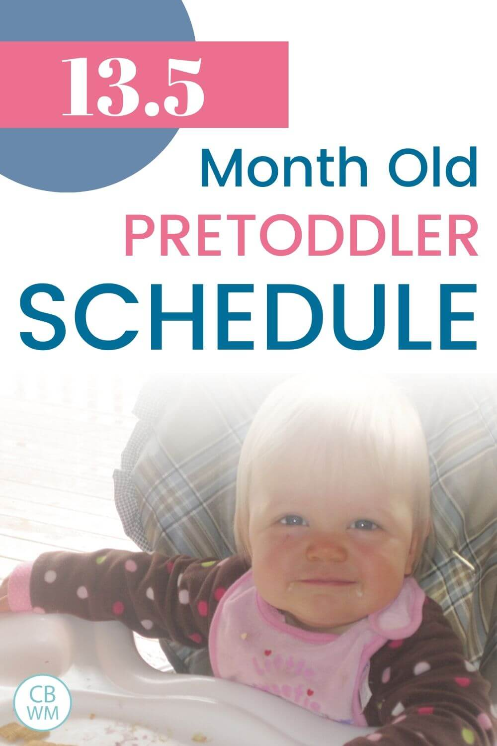 13.5 Month Old Schedule pinnable image