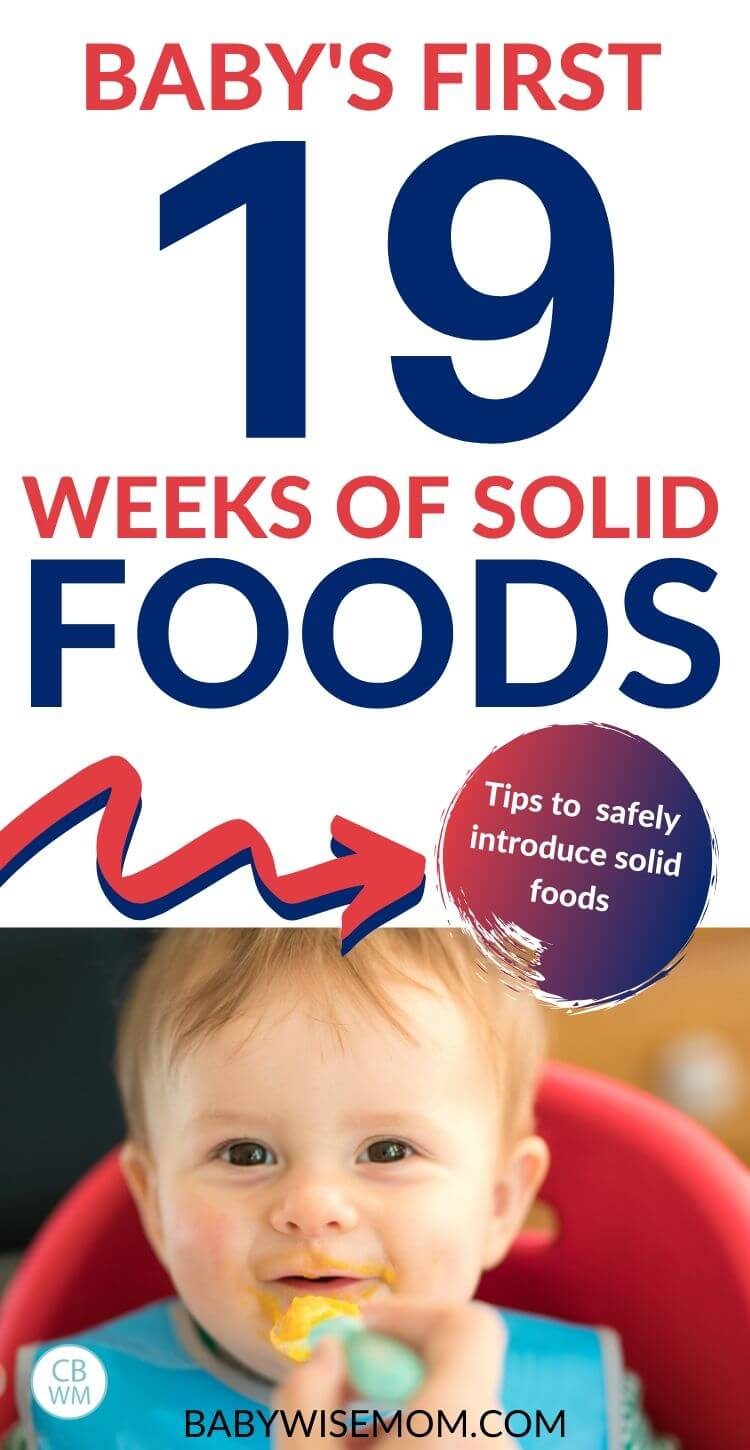 Baby's first 19 weeks of solid foods pinnable image