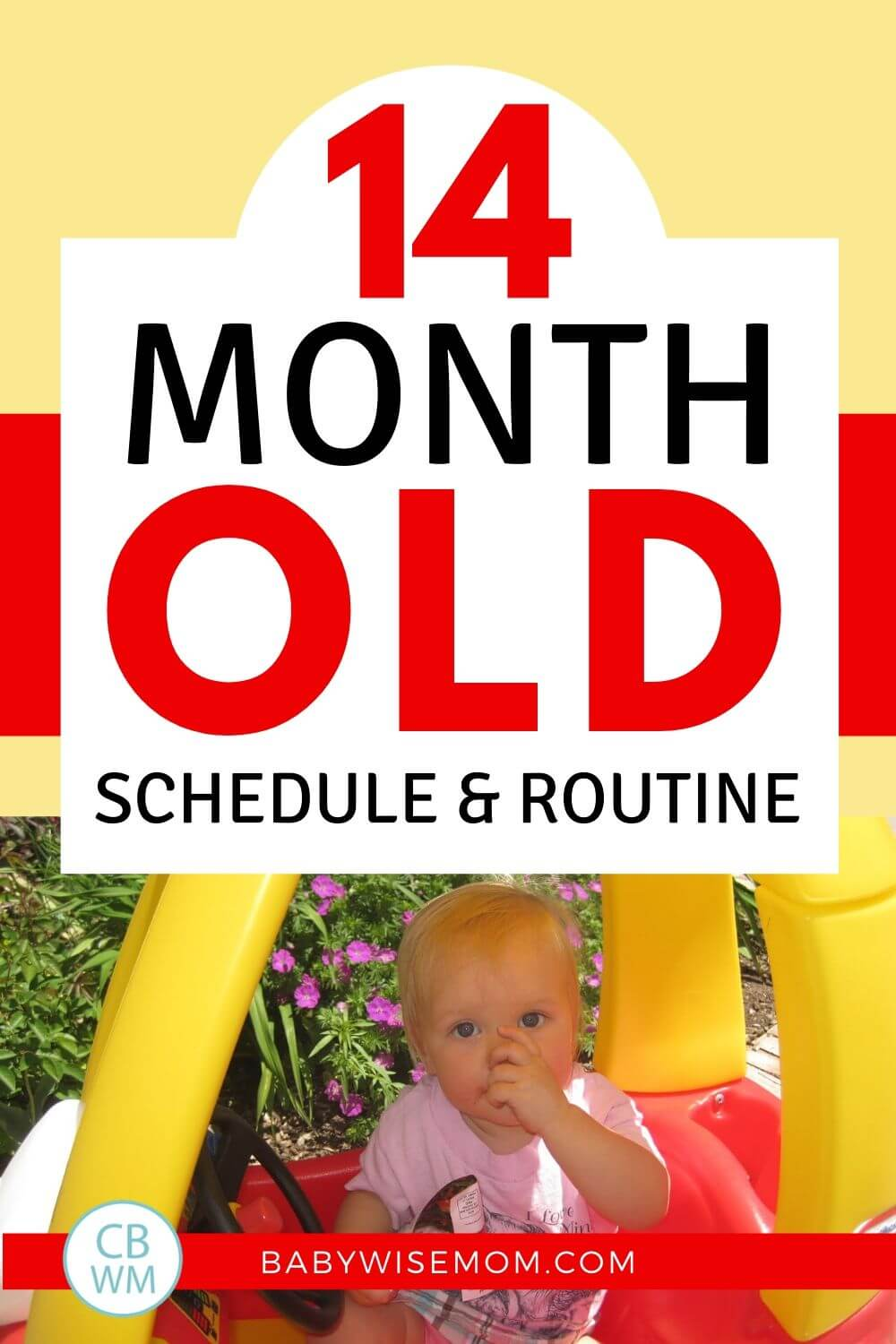 14 month old schedule pinnable image
