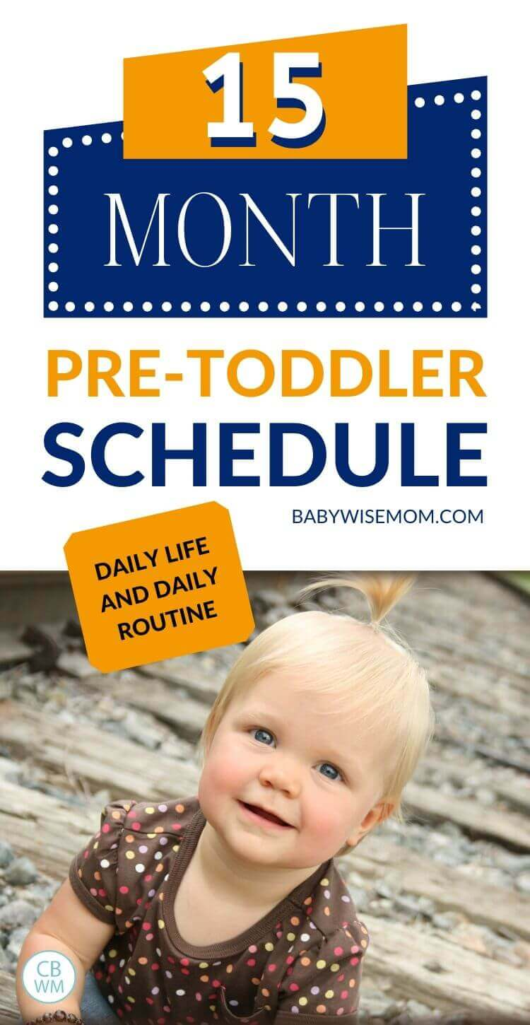 15 month old pretoddler schedule