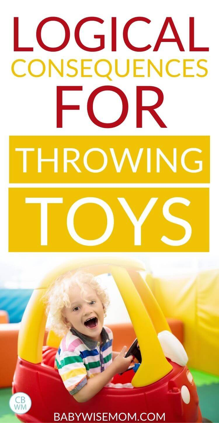 Logical consequences for throwing toys pinnable image