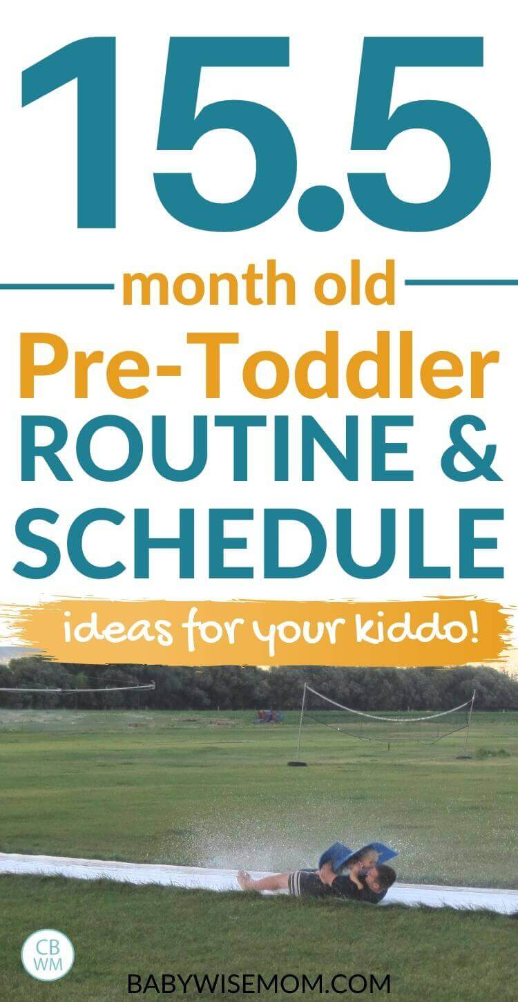 15.5 month old pre-toddler routine and schedule pinnable image