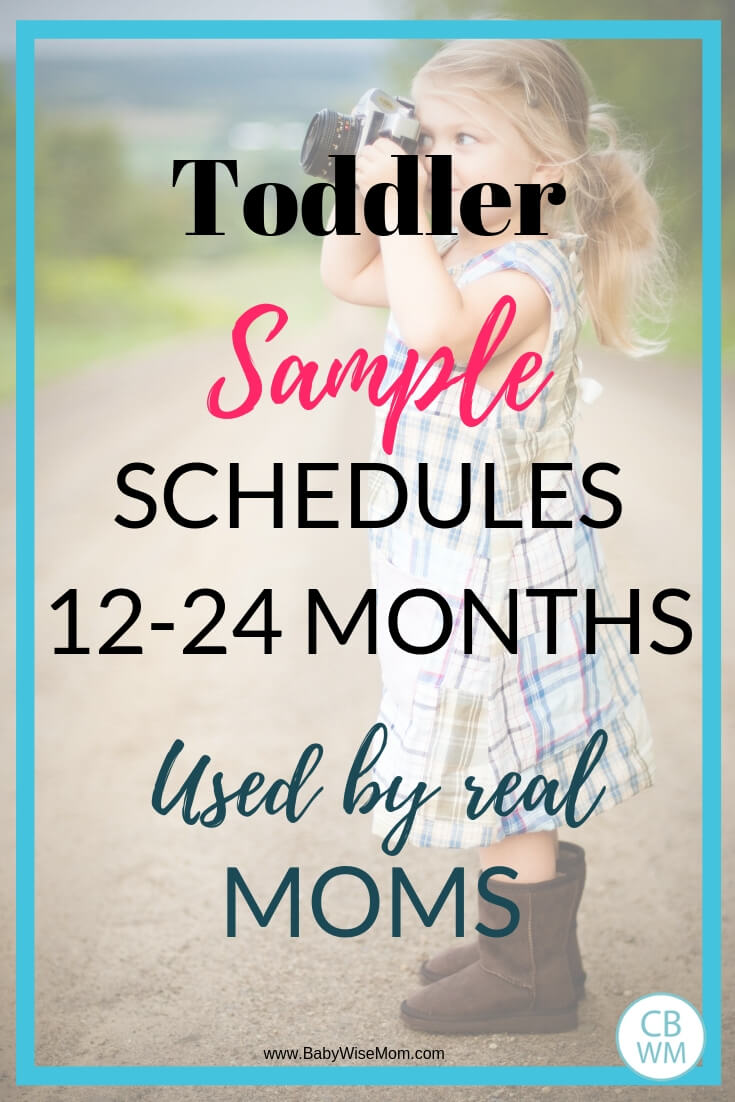 Text overlay reading toddler sample schedules 12-24 months used by real moms