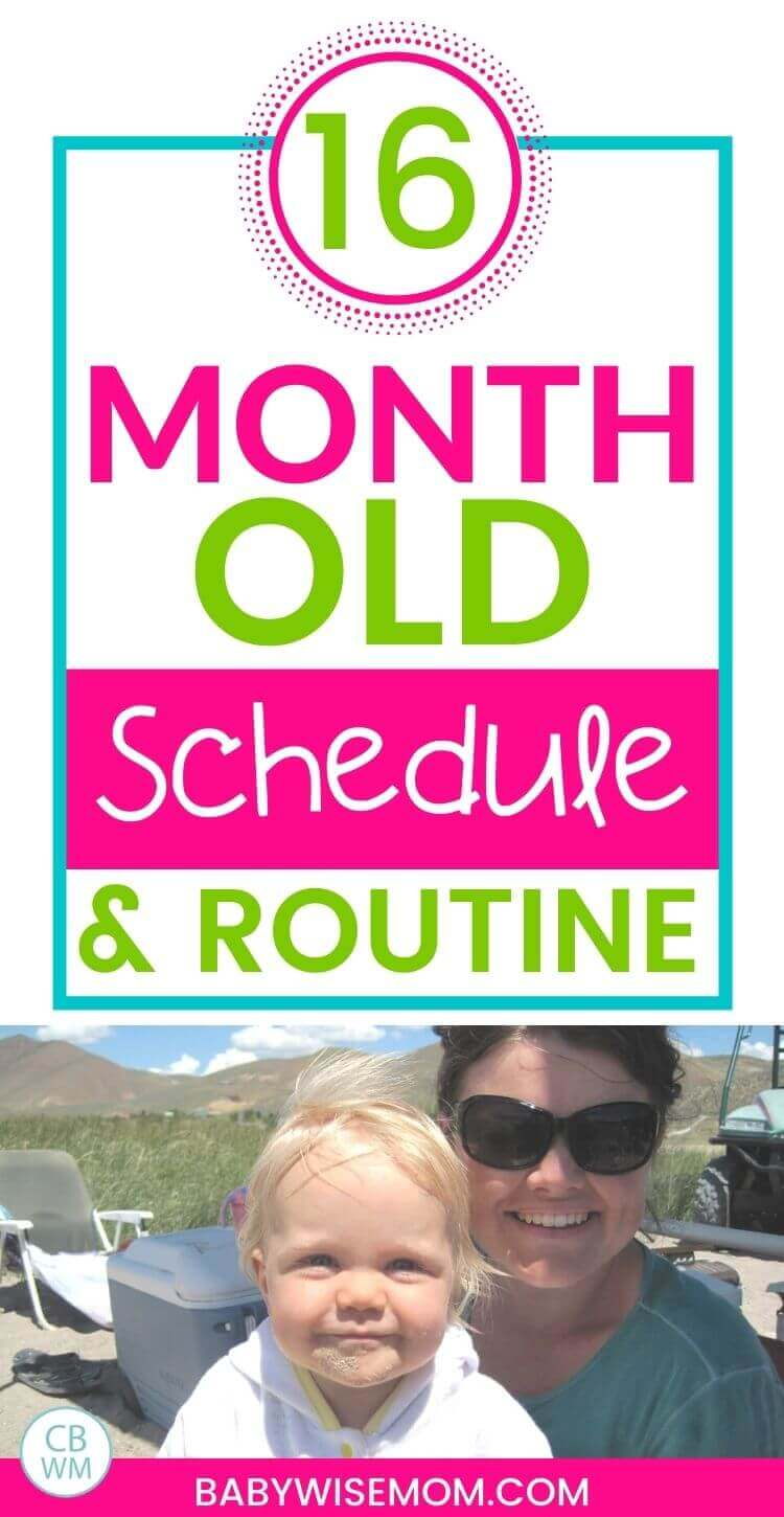 16 month old schedule and routine