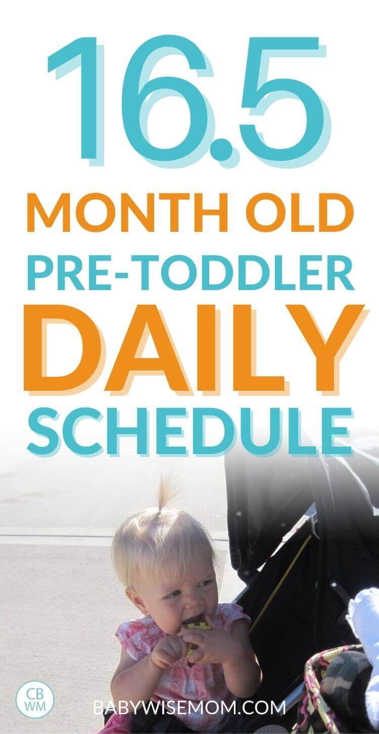 16.5 month old pretoddler schedule and daily routine pinnable image