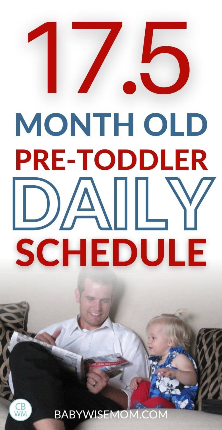 17.5 month old daily schedule