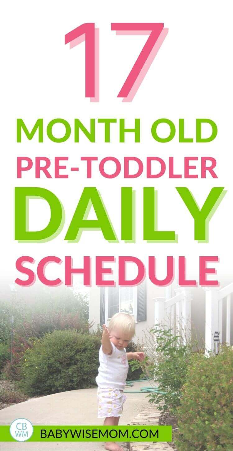 17 month old pretoddler summary. A full summary of life for this 17 month old. Find out what daily life was like and find a 17 month old sample schedule to follow. #pretoddler #pretoddlersummary #pretoddlerschedule #17montholdscedule