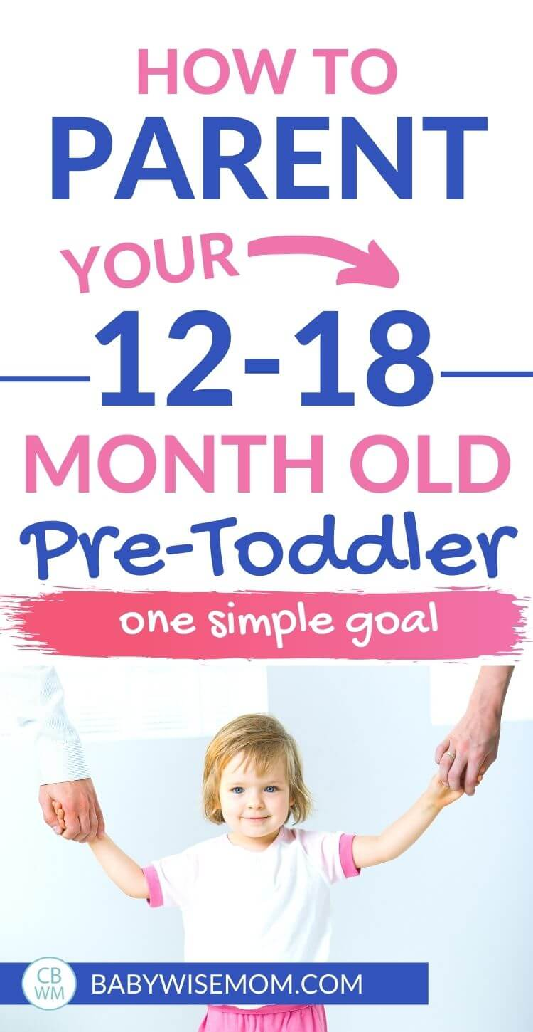 How to parenting your pre-toddler