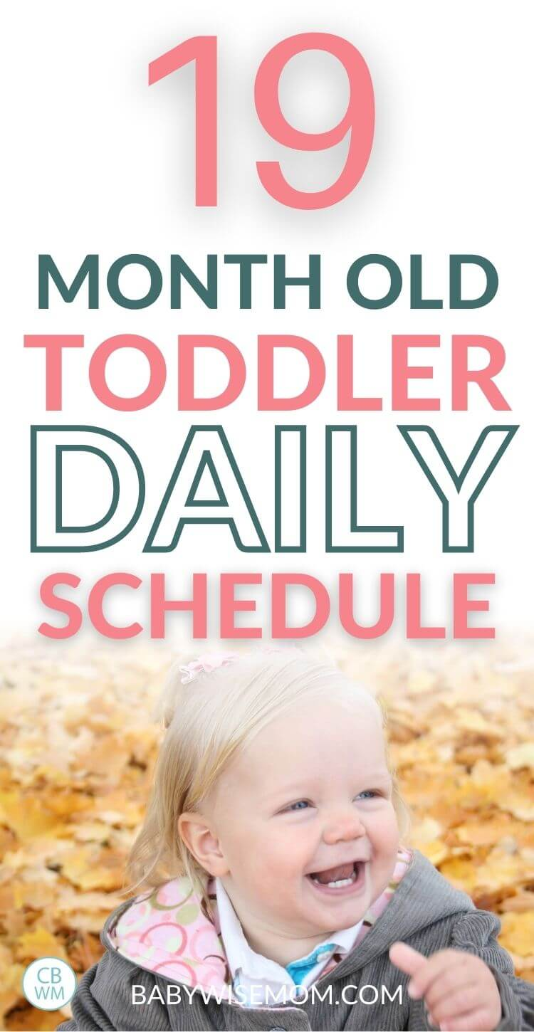 19 month old daily schedule